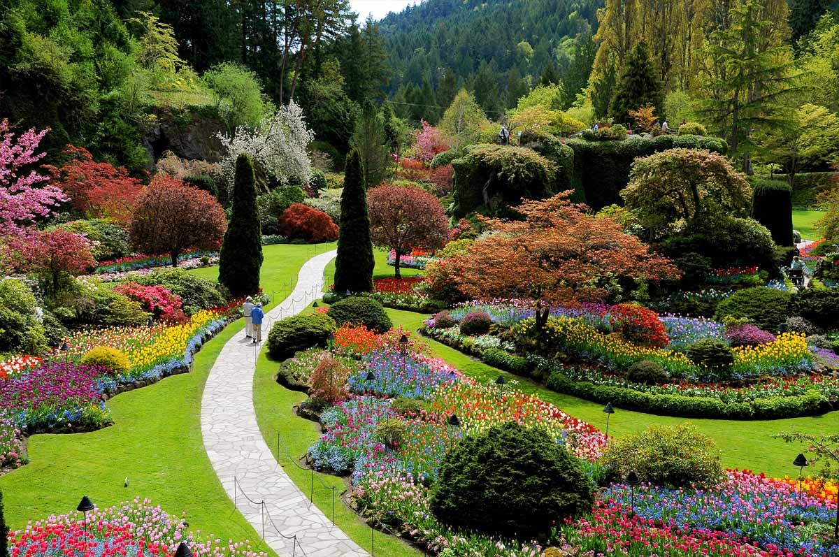 El jardín de las mil rosas. - LOFF.IT