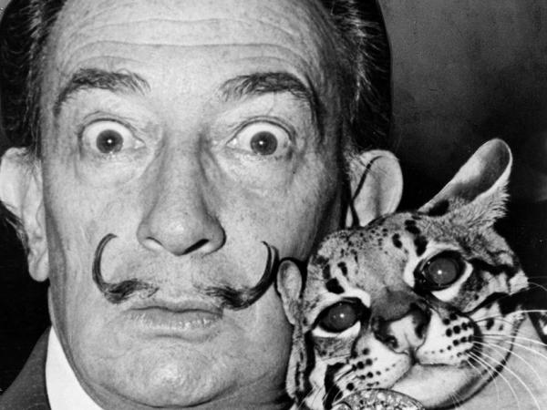 Salvador Dalí El Pintor De Sueños Loffit Biografía