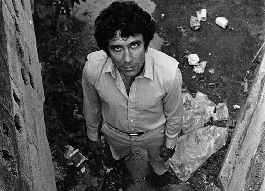 Reinaldo Arenas Escritor Encarcelado Y Torturado Por Sus